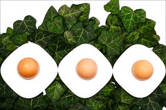 A series of three eggs and egg cups on a green background Royalty Free Stock Images