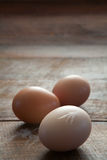 Three Eggs and Feathers Stock Image