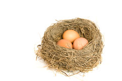 Three eggs in a nest Stock Photo