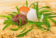 Three eggs in nest from grass. With feathers Stock Images