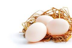 Three eggs on the net, white isolated Stock Photos