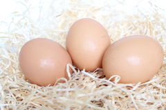 Three eggs. Put on the straw royalty free stock photography