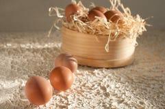 Three eggs at screens full of eggs on wood. En royalty free stock image