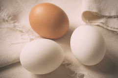 Three eggs Stock Image