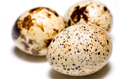Three eggs on white background Royalty Free Stock Images