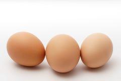 Three eggs on a white background.  Stock Photos