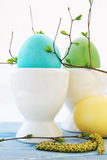Three eggs in a white ceramic Royalty Free Stock Image