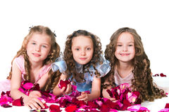 Three elegant girls Stock Image