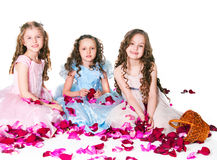 Three elegant girls Royalty Free Stock Photo