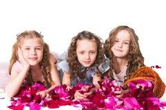 Three elegant girls Stock Photo