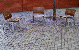Free Three Empty Benches On The Streets Of Barcelona Stock Images - 126261604