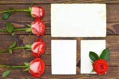 Three empty photo frames and roses Royalty Free Stock Photos