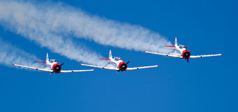 Three Eqstra Harvards in formation dive Royalty Free Stock Images