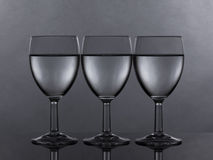 Three equally filled glasses of wine or water Royalty Free Stock Image