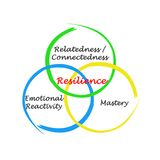 Components of Resilience. Three Essential Components of Resilience vector illustration