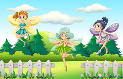 Three fairies flying in garden Stock Images