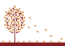 Three with falling leaves. Autumn tree with falling leaves Royalty Free Stock Photo