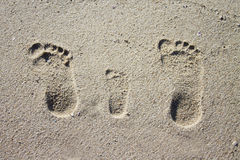 Three family footprints in sand Royalty Free Stock Image
