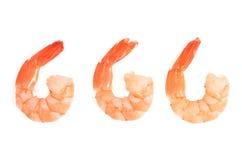 Three fantail prawns Royalty Free Stock Photo