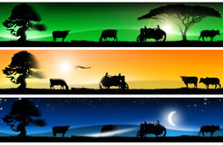 Three fantastic countryside landscapes banners. Three banners of imagination with colorful landscapes of country life, with grass, trees, cows, tractor and bird Stock Photography