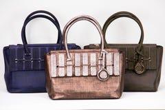 Fashionable women bag. Three fashionable women bags blue,brown,beige Stock Image
