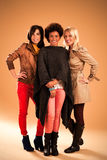 Three Fashionable Women Stock Image