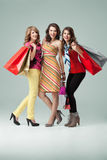 Three fashionable Women Shopping Stock Image