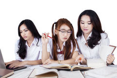 Three female classmates studying together Stock Photos