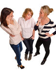 Three female friends enjoying Stock Photography