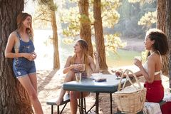 Three female friends hanging out by a lake, close up stock image