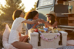 Three female friends make a toast at a picnic Stock Image