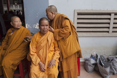 Three female monks Stock Images