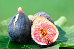 Three Figs on fig leaf. In the field Royalty Free Stock Photography