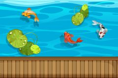 Free Three Fish And Waterlily In The Pond Royalty Free Stock Photos - 107377418