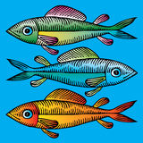 Three fish hand drawing Stock Photo