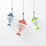 Three fish skeleton Royalty Free Stock Images
