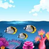 Three fish swimming under the ocean royalty free illustration