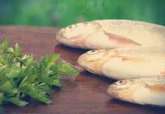 Three fish Royalty Free Stock Photography