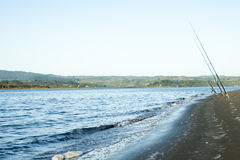 Three fishing poles at beach. Royalty Free Stock Photo