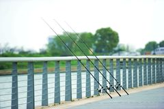 Three the fishing rod Royalty Free Stock Image