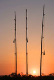 Three fishing rods at sunset Royalty Free Stock Photos
