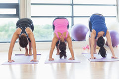 Three fit women doing the Downward Facing Dog pose Royalty Free Stock Image