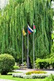 Three flags in the Park Royalty Free Stock Photo