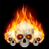 Three flaming skulls. With fiery eyes on black background Stock Photos
