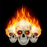 Three flaming skulls. With fiery eyes. Illustration on black background Royalty Free Stock Photos