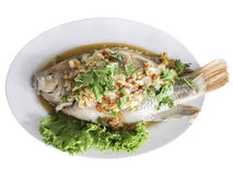 Three flavor red tilapia,thai food.  Stock Image