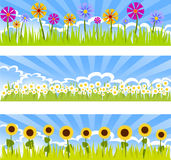 Three floral banners Royalty Free Stock Photography