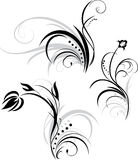Three floral elements for design. Illustration Stock Photography