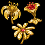Three flowers of gold on black background. Vector. Three flowers of gold on a black background. Vector illustration for your design needs Royalty Free Stock Images
