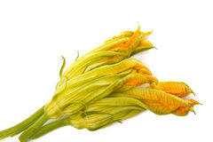 Three flowers zucchini. Top view Stock Images